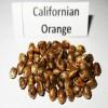 Насіння  Californian Orange