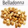Семена Belladonna